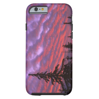 USA, Oregon, Three Sisters Wilderness, Vivid Tough iPhone 6 Case