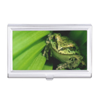 USA, Oregon, Treefrog in False Hellebore Business Card Holder