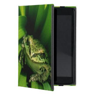 USA, Oregon, Treefrog in False Hellebore Cases For iPad Mini