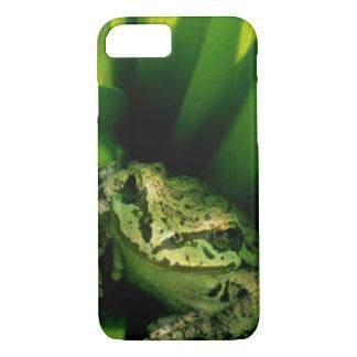 USA, Oregon, Treefrog in False Hellebore iPhone 7 Case