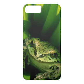 USA, Oregon, Treefrog in False Hellebore iPhone 8 Plus/7 Plus Case