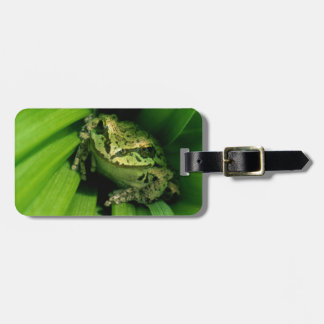 USA, Oregon, Treefrog in False Hellebore Luggage Tag
