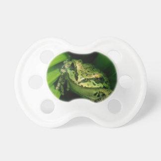 USA, Oregon, Treefrog in False Hellebore Pacifiers