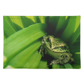 USA, Oregon, Treefrog in False Hellebore Placemat