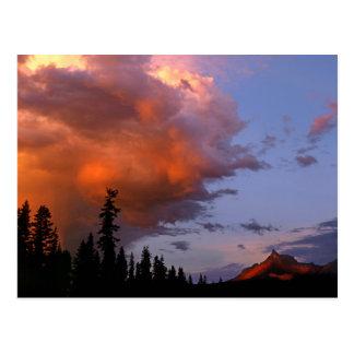 USA, Oregon, Umpqua National Forest. Storm 2 Postcard