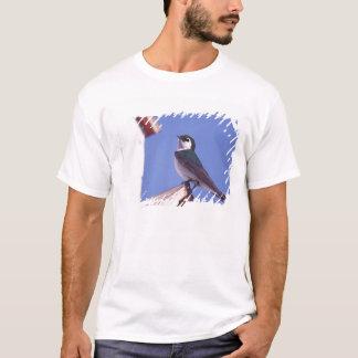 USA, Oregon. Violet-Green Swallow Tachycineta T-Shirt