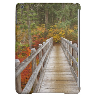 USA, Oregon, Willamette National Forest. Case For iPad Air