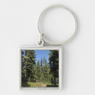 USA, Oregon, Willamette National Forest, Fall Silver-Colored Square Key Ring