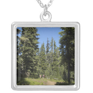 USA, Oregon, Willamette National Forest, Fall Silver Plated Necklace
