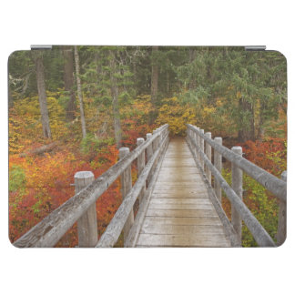 USA, Oregon, Willamette National Forest. iPad Air Cover