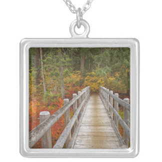 USA, Oregon, Willamette National Forest. Square Pendant Necklace