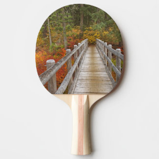 USA, Oregon, Willamette National Forest. Ping Pong Paddle