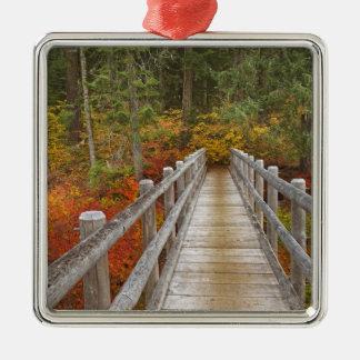 USA, Oregon, Willamette National Forest. Silver-Colored Square Decoration