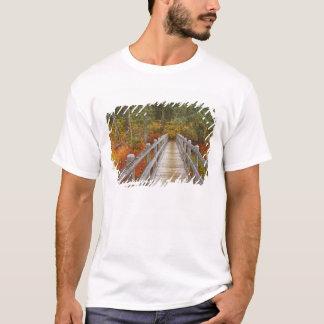 USA, Oregon, Willamette National Forest. T-Shirt