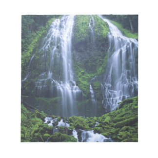 USA, Oregon, Willamette National Forest. View of Notepad