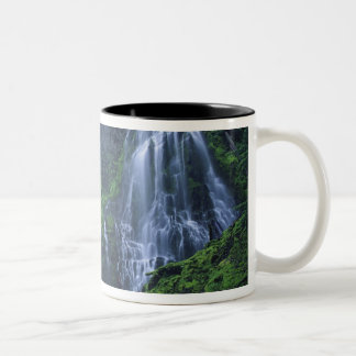USA, Oregon, Willamette National Forest. View of Two-Tone Coffee Mug