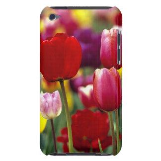 USA, Oregon, Willamette Valley. Beautiful iPod Case-Mate Case
