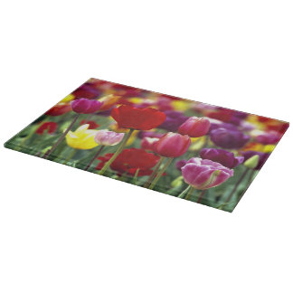 USA, Oregon, Willamette Valley. Beautiful Cutting Board
