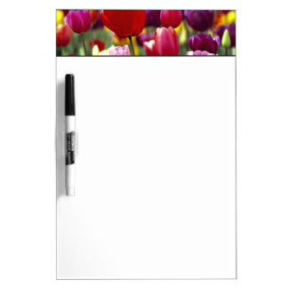 USA, Oregon, Willamette Valley. Beautiful Dry Erase Board