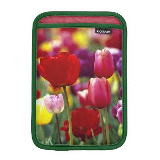 USA, Oregon, Willamette Valley. Beautiful iPad Mini Sleeves