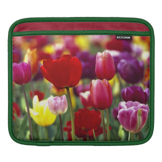 USA, Oregon, Willamette Valley. Beautiful iPad Sleeve