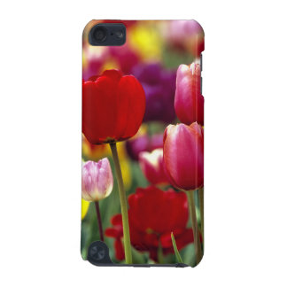 USA, Oregon, Willamette Valley. Beautiful iPod Touch (5th Generation) Cases