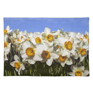 USA, Oregon, Willamette Valley. Daffodils grow Placemat