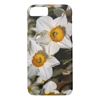 USA, Oregon, Willamette Valley. Daffodils iPhone 8/7 Case