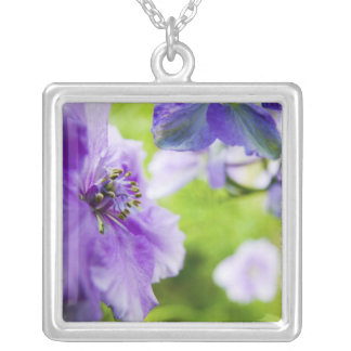 USA, Oregon, Willamette Valley, Larkspur Close 2 Silver Plated Necklace