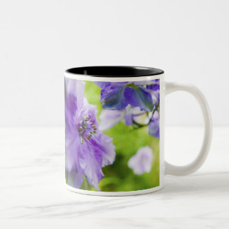USA, Oregon, Willamette Valley, Larkspur Close 2 Two-Tone Coffee Mug