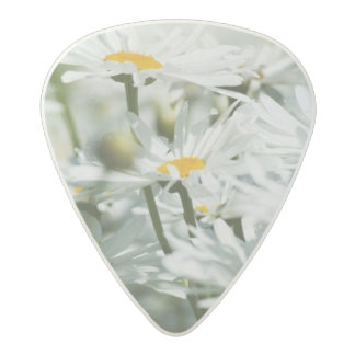 USA, Oregon, Willamette Valley, Selective Acetal Guitar Pick