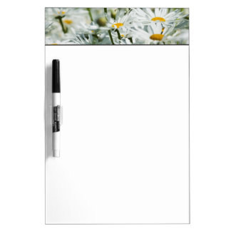 USA, Oregon, Willamette Valley, Selective Dry Erase Board