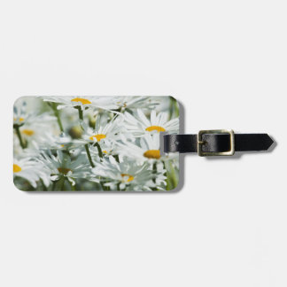 USA, Oregon, Willamette Valley, Selective Luggage Tag