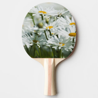USA, Oregon, Willamette Valley, Selective Ping Pong Paddle