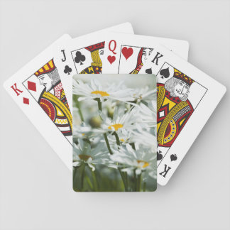 USA, Oregon, Willamette Valley, Selective Playing Cards