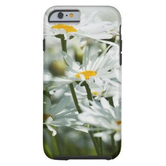 USA, Oregon, Willamette Valley, Selective Tough iPhone 6 Case