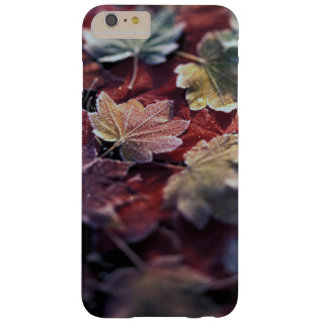 USA, Pacific Northwest. Japanese maple leaves Barely There iPhone 6 Plus Case