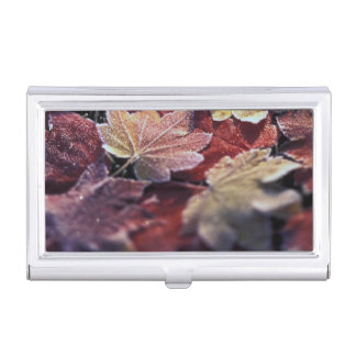 USA, Pacific Northwest. Japanese maple leaves Business Card Holder
