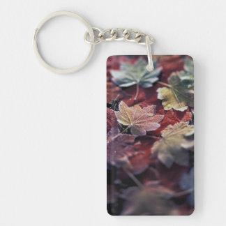 USA, Pacific Northwest. Japanese maple leaves Double-Sided Rectangular Acrylic Key Ring