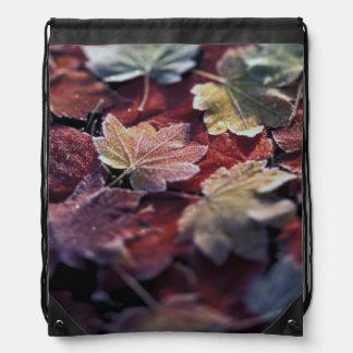 USA, Pacific Northwest. Japanese maple leaves Drawstring Bag