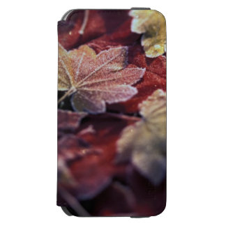 USA, Pacific Northwest. Japanese maple leaves Incipio Watson™ iPhone 6 Wallet Case