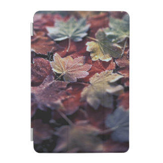 USA, Pacific Northwest. Japanese maple leaves iPad Mini Cover