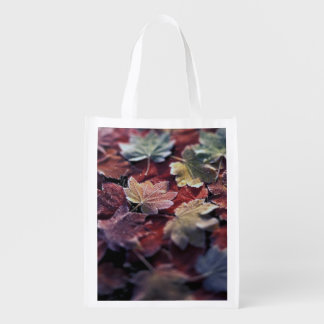 USA, Pacific Northwest. Japanese maple leaves Reusable Grocery Bag