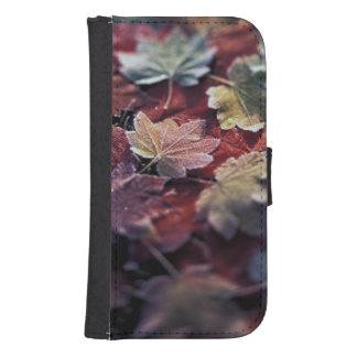 USA, Pacific Northwest. Japanese maple leaves Samsung S4 Wallet Case