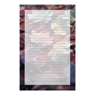 USA, Pacific Northwest. Japanese maple leaves Stationery
