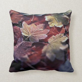USA, Pacific Northwest. Japanese maple leaves Throw Pillow