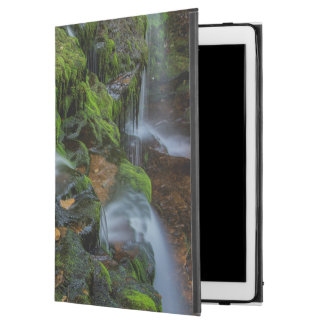 """USA, Pennsylvania, Benton, Ricketts Glen State iPad Pro 12.9"""" Case"""