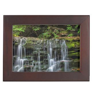 USA, Pennsylvania, Benton. Waterfall In Ricketts Keepsake Box
