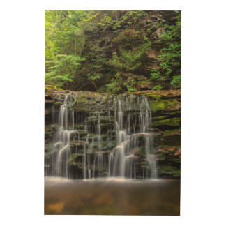 USA, Pennsylvania, Benton. Waterfall In Ricketts Wood Wall Decor