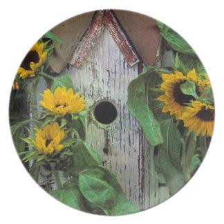 USA, Pennsylvania. Birdhouse and garden Plate